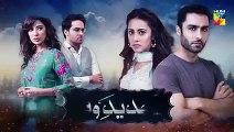 Tajdeed e Wafa Epi 19 Promo HUM TV Drama 20 jan 2019