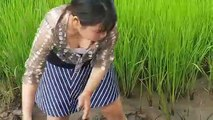 My lifestyle fishing daily.  amazing of girl fishing (fishing in field)