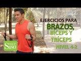 Ejercicios para brazos, bíceps y tríceps   Salud180
