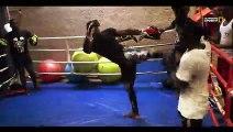 Sports de combat:  Ricardo Bhaly, Champion de Wushu Sanda