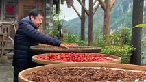 Chinese New Year – Jia Zhangke on Slo-mo – Apple