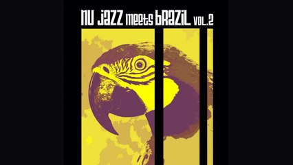 Best Of Jazz Bossa Nova Music - Nu Jazz Meets Brazil