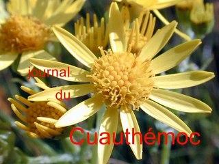 Decode Cuauthémoc