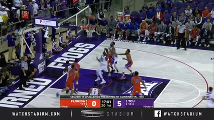 Florida vs. TCU Basketball Highlights (2018-19)