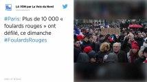 Foulards rouges. 10500 personnes à la « marche républicaine des libertés » à Paris