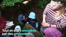 Danemark : la forêt pour salle de classe