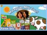 Korean girls tried MILK in Malaysia  Milk Mukbang  l Blimey in KK Ep.5