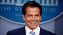 Anthony Scaramucci Opens Up About Time On Celebrity Big Brother