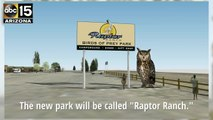 """First look at """"Raptor Ranch,"""" the birds-of-prey attraction planned in Northern Arizona - ABC15 Things To Do"""