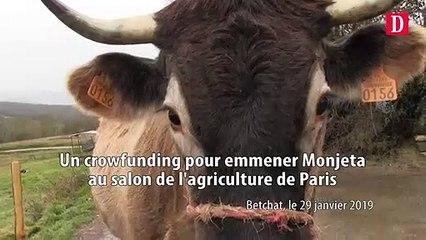 Un crowdfunding pour emmener Monjeta au salon  de l'agriculture de Paris