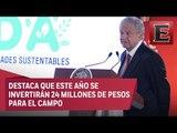 """López Obrador presenta el programa """"Sembrando Vida"""""""