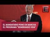 Conferencia de prensa de Andrés Manuel López Obrador (1 de febrero de 2019)