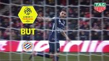 But Andy DELORT (73ème) / Nîmes Olympique - Montpellier Hérault SC - (1-1) - (NIMES-MHSC) / 2018-19