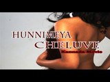 Full Kannada Movie 2007 | Hunnimeya Cheluve | Malashri.