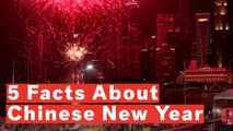 5 Facts About Chinese New Year