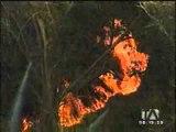 Incendio amenaza instalaciones de Pronaca en Puembo