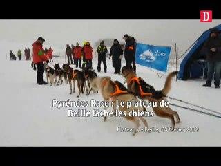 Pyrénées Race : le Plateau de Beille lâche les chiens