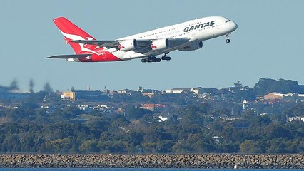 Qantas Resource | Learn About, Share and Discuss Qantas At Popflock com