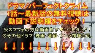 【ドラマL】パーフェクトクライム 4<2019 02 0