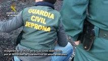 SEPRONA: Detenidas o investiga casi 600 personas por delitos de maltrato animal