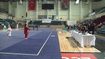 Türkiye Wushu Taolu Taichi Şampiyonası - SAKARYA