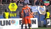 But Andy DELORT (66ème) / Montpellier Hérault SC - AS Monaco - (2-2) - (MHSC-ASM) / 2018-19