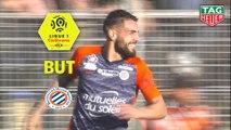 But Andy DELORT (90ème +1 pen) / Montpellier Hérault SC - AS Monaco - (2-2) - (MHSC-ASM) / 2018-19