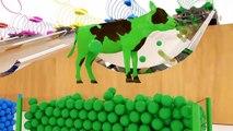 Dessin Animé avec Voitures Colorées & Animaux pour bébé - Vidéo éducative Français