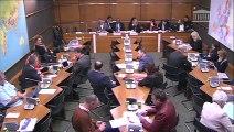 Intervention en commission du développement durable lors de l'audition de Didier LIVIO, associé responsable de Deloitte Développement Durable, sur l'étude sur le potentiel de développement économique durable de la Guyane