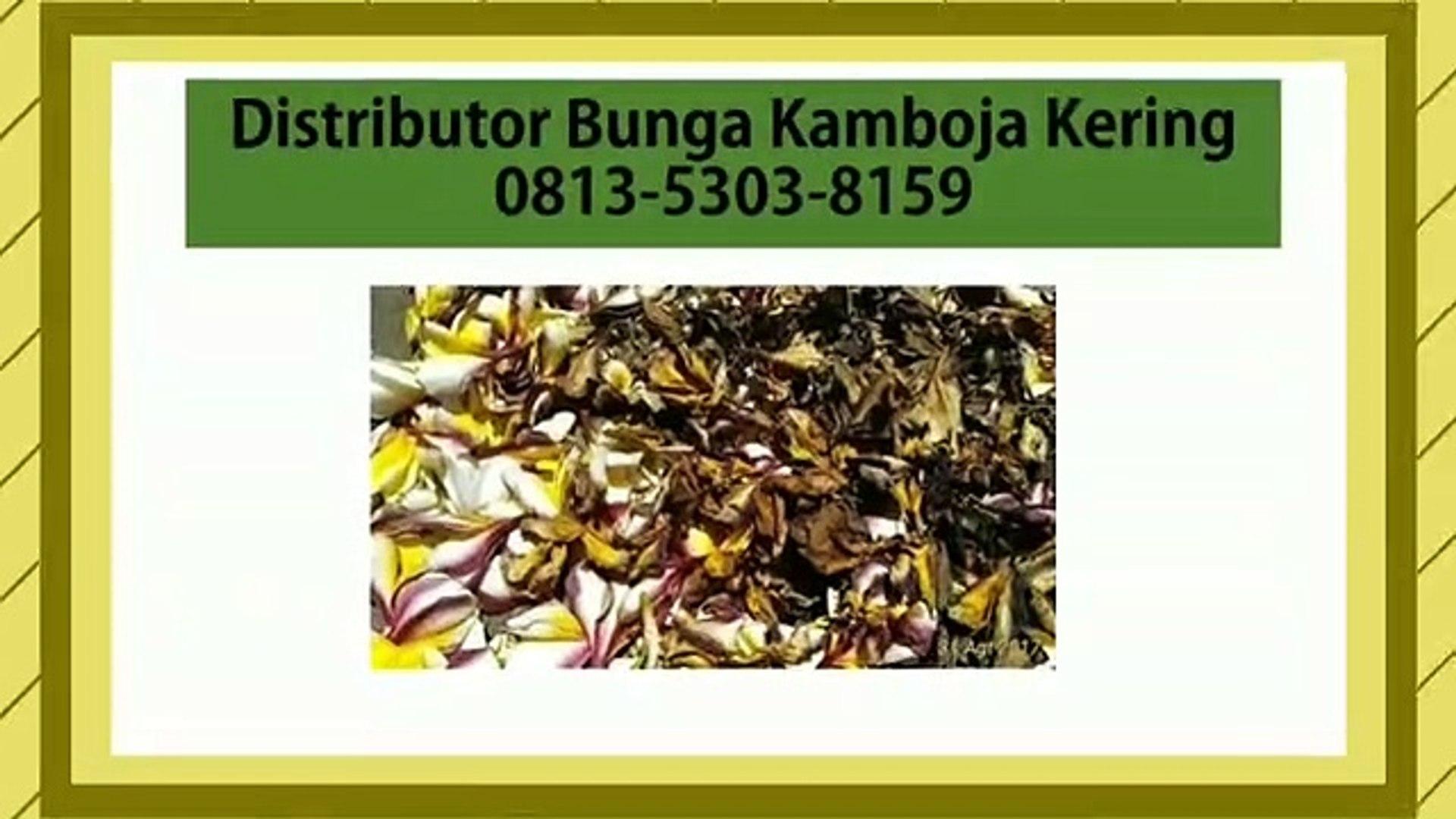 KUALITAS TERJAMIN!!! 0813-5303-8159, Distributor Bunga Kamboja Kering Semarang