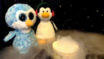 Penguins found something!  Ty beanie babies boos snow bank ice cube dry ice experiment