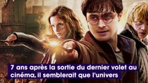 Harry Potter : bientôt de retour en série ? Daniel Radcliffe s'exprime !