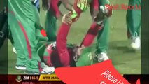 Top 5  Bizarre Run Outs incidents in Cricket - Bizarre Run Outs