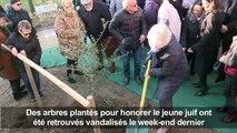 Un arbre planté à Paris en hommage à Ilan Halimi