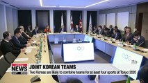Meeting in Switzerland to decide joint Korean teams for 2020 Tokyo Olympics