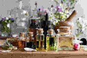 Les différents types de plantes médicinales