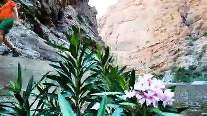 Wandern im Oman: Entlang des Wadi Qtm