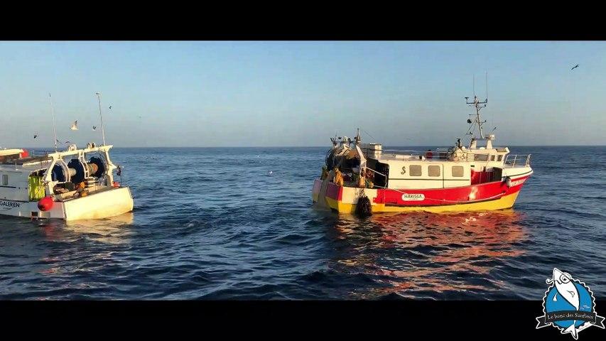 La pêche à la sardine de Saint Gilles Croix de Vie