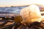 Pollution des océans : le plastique jusque dans nos assiettes