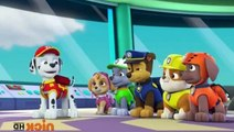 PAW Patrol - S 2 E 17 - Pups Save a Sniffle - Pups and the Ghost