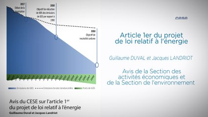 Article 1er du projet de loi relatif à l'énergie - cese