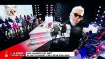 Le monde de Macron: Mort de Karl Lagerfeld, sa chatte Choupette déjà riche à millions – 20/02
