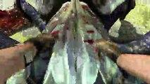 Serious Sam 3: BFE - Cuerpo a cuerpo