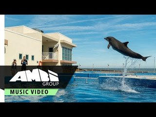 Best Friend - Feauturing Lola Sultan & Madison Mosley | From Bernie the Dolphin