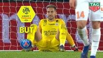 But Petar SKULETIC (73ème csc) / Paris Saint-Germain - Montpellier Hérault SC - (5-1) - (PARIS-MHSC) / 2018-19