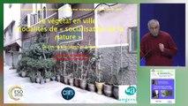 Constructions sociales autour du végétal en ville