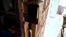 Ladrões deixam prejuízo em lan house na Rua Itália