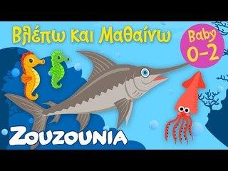 Βλέπω και Μαθαίνω #6 | Τα ζωάκια της Θάλασσας Mέρος Γ'  Εκπαιδευτικό