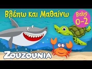 Βλέπω και Μαθαίνω #5 | Τα ζωάκια της Θάλασσας Mέρος Β' | Εκπαιδευτικό