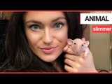 An animal lover shares her home with 90 pets | SWNS TV